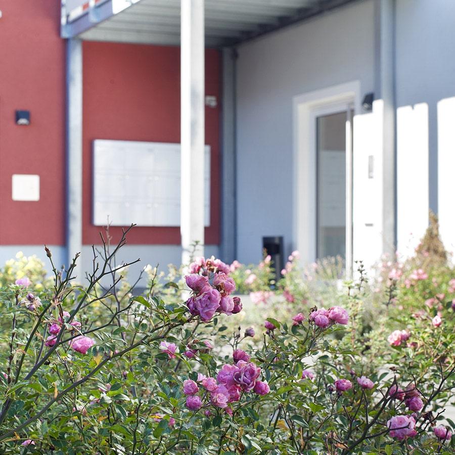 FAU-PDW_Webseite_Wohngemeinschaften_Kachel-WG-Sonntagsapark-Haiger02
